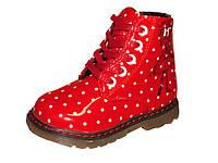 Демисезонные ботинки С.Луч  р 22,23, фото 1