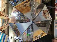 """Детский зонт трость Star Rain """"Собачки 3"""" полуавтомат, 8 спиц"""