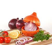 Контейнер для хранения чеснока в холодильнике