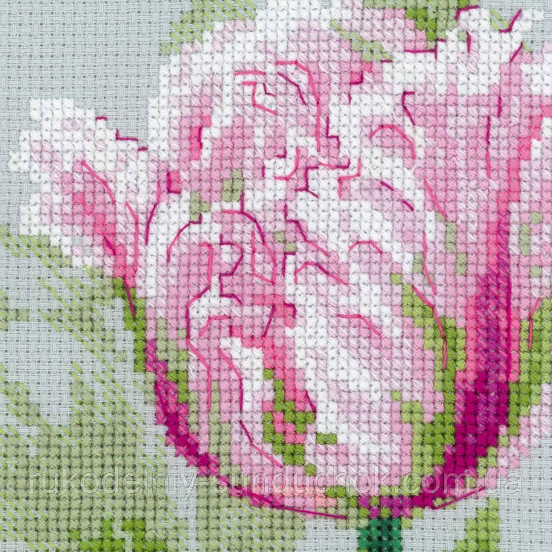 Вышивка тюльпан от риолис 162