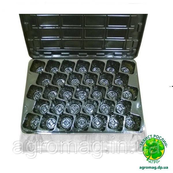 Кассета-парник для рассады 33 ячейки