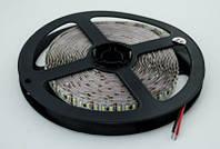 Светодиодная LED лента белая SMD 3014 240д/м (5 м) IP20