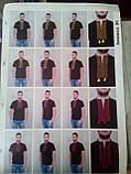 Мужская футболка-вышиванка, фото 5