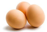 Обзор рынка яиц