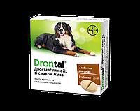 Дронтал плюс собак зі смаком м'яса таблетки  XL   кг уп.1*2 Bayer