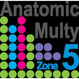Anatomic Multi