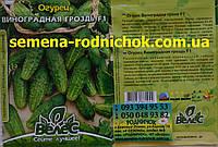 Виноградная гроздь F1 скороспелый гибрид огурца - урожайный устойчив к заболеваниям (2,5г в пачке)