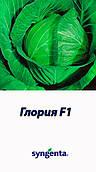 Капуста Глория F1/Gloria F1 Syngenta 2500 семян