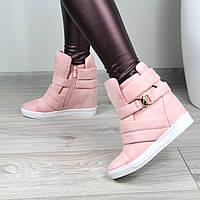 Ботинки женские демисезонные Сникерсы Zanotti розовые 41 размер,  осенняя обувь