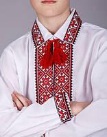 Вышиванка на мальчика с красным орнаментом