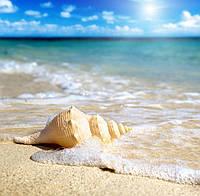 """Учебный курс """"Основы песочной терапии"""""""