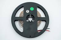 Зеленая светодиодная LED лента SMD 2835 60д/м (5 м) IP20