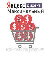 Контекстная реклама в Яндекс Директ для большого интернет магазина