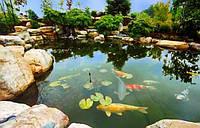 Гидроизоляция прудов, озер, резервуаров для хранения воды, биопрудов.