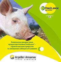 Агроветатлантик 25% ПрофіМікс-ХХL  для кнурiв плiдникiв, 25 кг