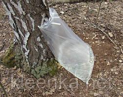 Мешок для березового сока, 40 мкм, 0,5м*1м, фото 2