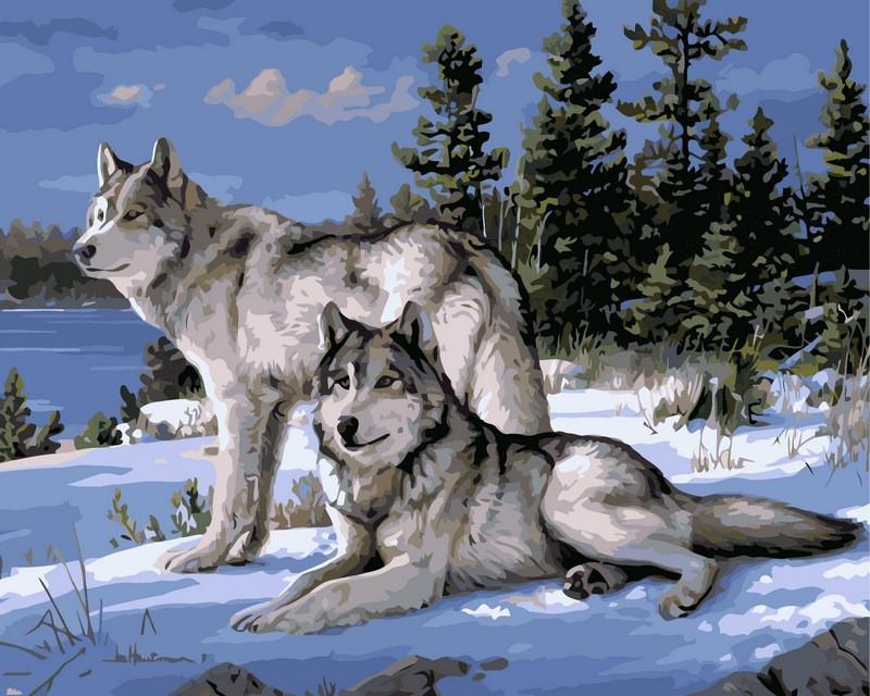 Раскраска по цифрам 40×50 см. Волки на снегу Художник Джозеф Хаутман