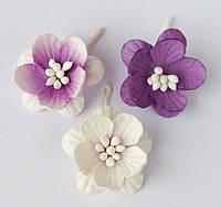 Цветы вишни сиреневый микс (3)