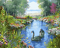 Картини по номерах 40×50 см. Черные лебеди Художник Андрес Орпинас, фото 1