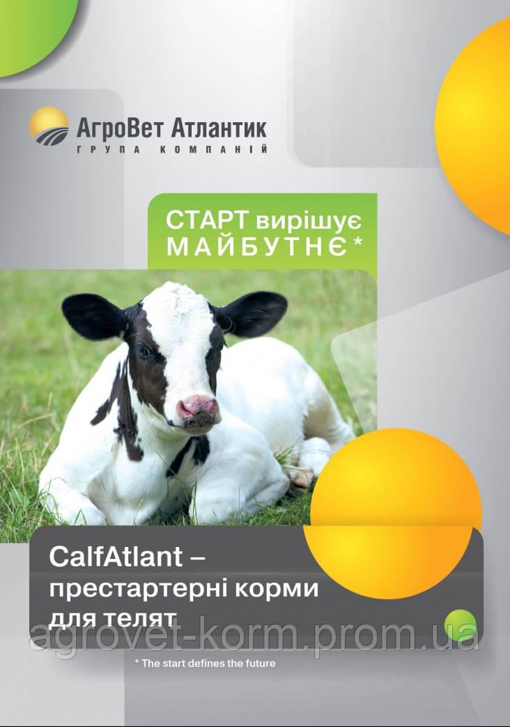 Агроветатлантiк ТМ Здорова CalfMin Atlant премикс для телят 0,5-1г на кг живого веса(3-4%).  25 кг