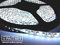 Светодиодная лента Epistar 3528 120 LED/m 9,6W/m IP54, фото 1