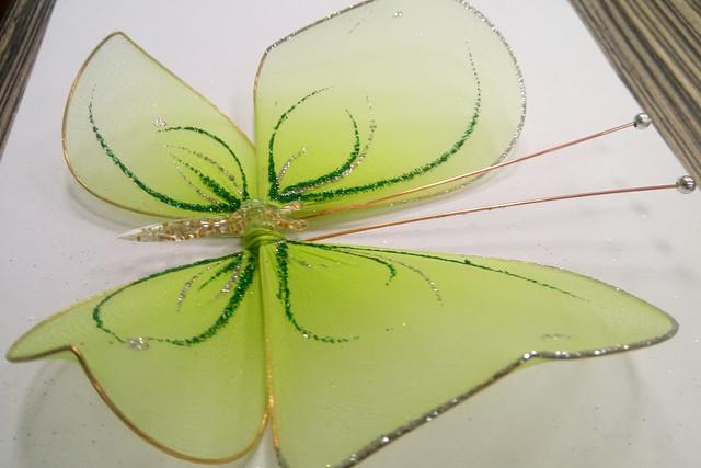#бабочка