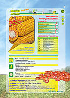 Насіння кукурудзи Моніка ФАО 350
