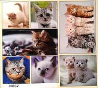 """Наклейка """"Котики и собачки"""",32"""