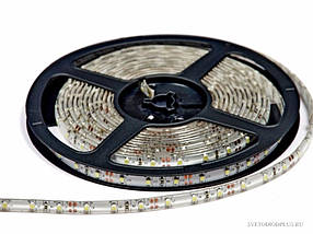 Лента светодиодная 300 SMD3528 - 5 метров в Силиконе!Акция, фото 2