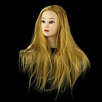 Учебная голова 30% натуральных волос,длина 65см, цвет золотистый, фото 1