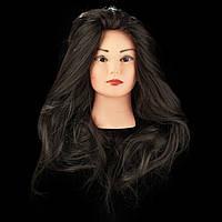 Учебный манекен для причесок, укладок и плетения PROFI №6, натуральный волос, коричневая