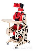 Вертикализатор ортопедический Dalmatian Invento размер 2, AkcesMed, DMp_0002