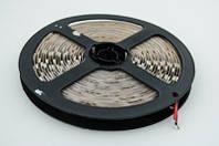 Светодиодная LED лента теплая белая SMD 5050 60д/м (5 м) IP20