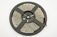 Светодиодная LED лента теплая белая SMD 5050 60д/м (5 м) IP65