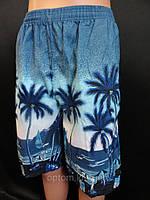 Шорты недорогие мужские с пальмами