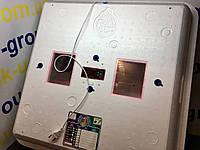 Инкубатор Рябушка-2 смарт плюс 150 яиц цифра с мех переворотом