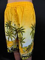 Шорты недорогие мужские с пальмами, фото 1