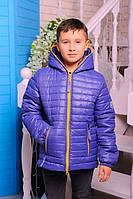 """Куртка демисезонная для мальчика """"Монклер"""" (р.30-40) василек, 30"""