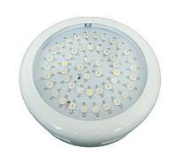 Светодиодный светильник для растений 50*1W (фитопанель)