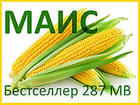 Семена кукурузы Бестселлер 287 МВ (МАИС)
