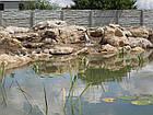 Плавательные пруды, водоемы для купания, фото 4