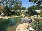 Плавательные пруды, водоемы для купания, фото 5
