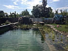 Эко-бассейны, биопруды, экопруды, фото 2