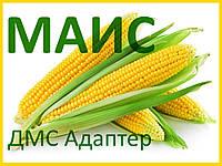 Семена кукурузы ДМС Адаптер (МАИС)