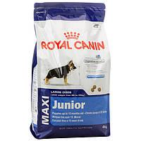 Royal Canin Maxi Junior/Роял Канин для щенков крупных пород с 2 до 15мес.