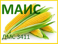 Семена кукурузы ДМС 3411 (МАИС)