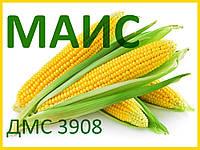 Семена кукурузы ДМС 3908 (МАИС)