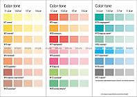 Пигментный концентрат Color-ton MGF Dufa 100 мл 100 мл, апельсин 26
