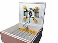 Автоматический мини-инкубатор универсальный Теплуша