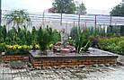 Декоративні струмки, садові фонтани, фото 2